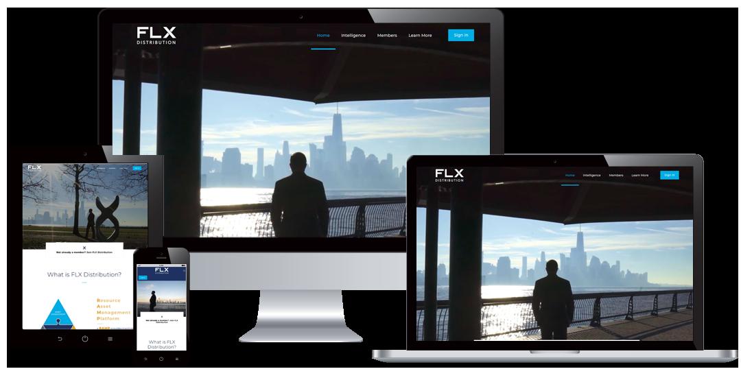 flx website by hhw creative