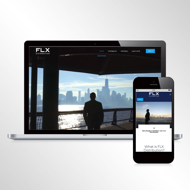 flx website by hhw creative